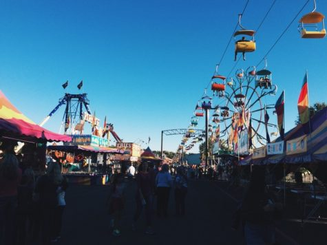 The perfect aesthetic: North Georgia State Fair radiates small-town charm