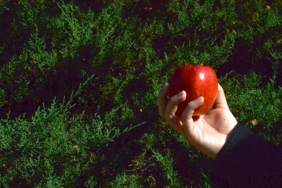 GMO's? Or GM-No's?