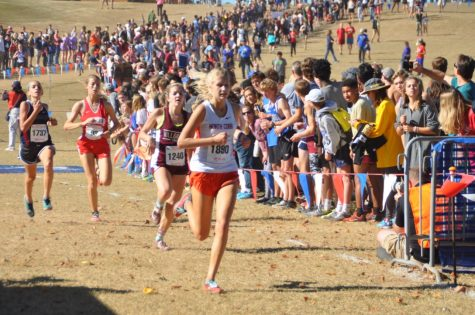 Girls XC caps off season with state competition