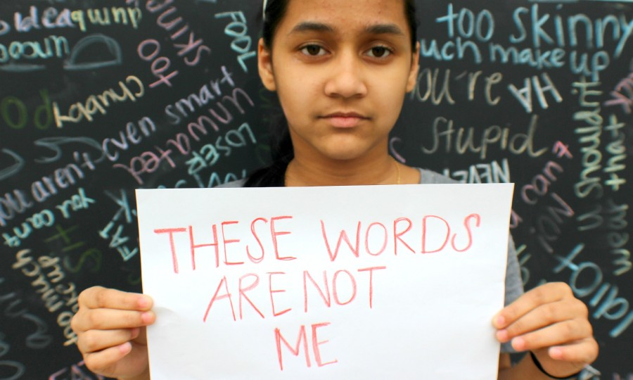 Bullies verbally take out anger on victims by using harsh words directed towards them. The hurtful words could stay bottled up to the victim, but none of these hurtful words should truly describe the appearance or social status of the victims.