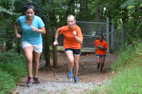 Runners sprint uphill to train for the upcoming season.