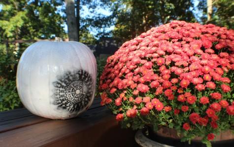 DIY fall goodies spice up drab decor