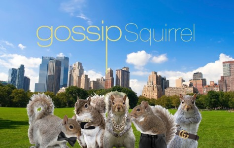 Gossip Squirrel first episode seems nuts to viewers
