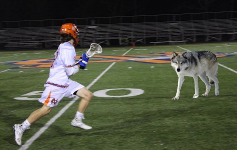 Who's afraid of the NC lacrosse team?