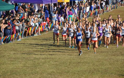 Varsity girls cross country advances to state, senior boys say goodbye