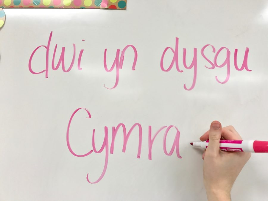 A NC student studies Welsh.
