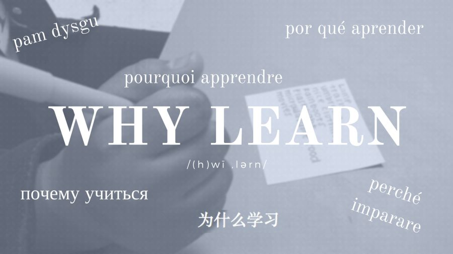 why-learn