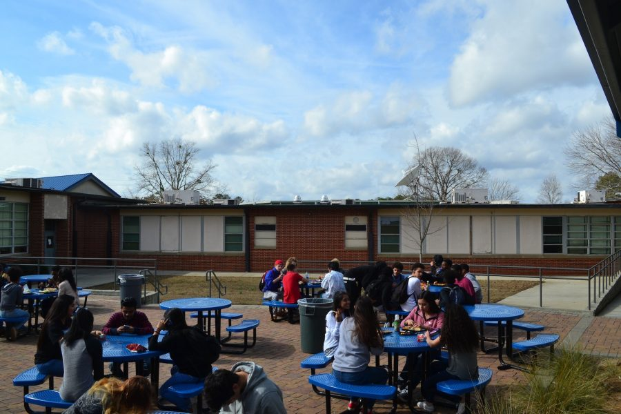 Students enjoy a sunny, 60 degree day sitting outside for lunch in the middle of winter. With Georgia's unpredictable weather, 70 degree weather comes days after snow storms and NC students love it.