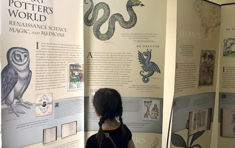 Mischief managed: Community library presents Harry Potter exhibit