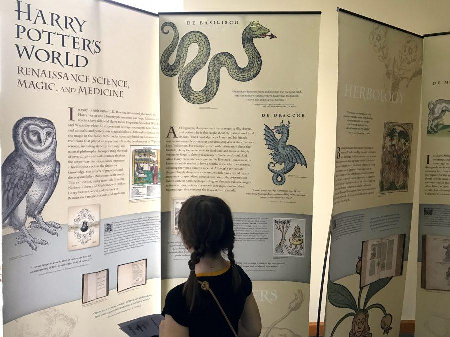 "Seven-year-old citizen Rachel Wilford views the ""Harry Potter's World: Renaissance Science, Magic, and Medicine"" exhibit at the Smyrna Public Library."
