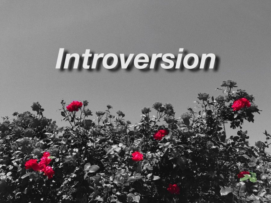 Introversion, or the intense feeling of the need for privacy and satisfaction from one's own thoughts, results in the societal bias that introverts hold antisocial or shy traits. In reality, introverts love loneliness, but not the feeling of lonesomeness. To prevent this misunderstanding, we must teach others that quietness does not make you any less better than those who tend to speak more.