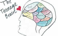 Four formative years: Teenage brains and self-discovery