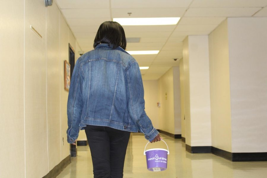 Following their annual inductions, NHS members started collecting donations for March of Dimes. The organization raises money to provide affordable care for mothers and their children, fighting for advancements in maternal care and working to reduce the amount of premature births in America. Students who want to donate can find collectors carrying purple buckets marked with the March of Dimes logo.