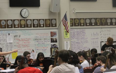 Spring into chamber orchestra('s concert)