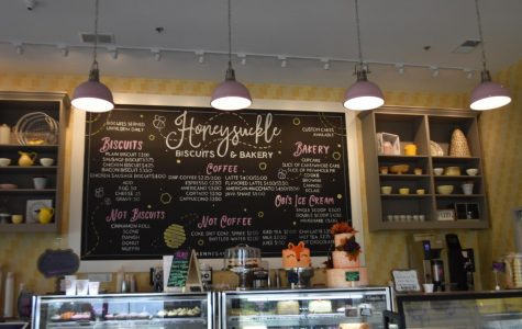 The bakery outlines simplicity, and drives itself to resemble a comfortable, homely cafe. The decorations consist of warm-colored light bulbs, hanging by thin strings to compliment the entirety of the store. A big black-board carries the hand-written menu, emphasizing crispy delights such as biscuits and coffee.