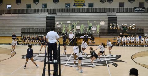 Lady Warriors volleyball dives out of regionals