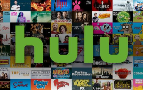 Hulu features a variety of popular shows to capture the attention of people all around the globe. this article lists just a few of the many other shows that viewers can find when casually browsing Hulu for some new shows to watch. Each of the shows includes its own individual story and plot to meet the standards of different people who have certain requirements and preferences that they look for when choosing a show to watch.