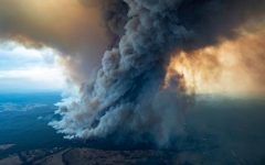Sunburnt country: the Australian wildfires explained
