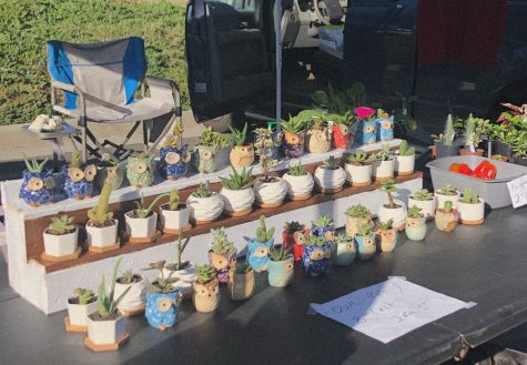 """Everyone here is like a big family. Sometimes when a big gust of wind will come and someone's tent will begin to fly away everyone rushes over to help. It's nice to have this close, little community,""  a vendor at the market who sells plants, Al Jorgenson said. His packed stand contains succulents and other greenery that sit in small, colorful pots."