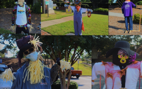 Over 60 scarecrows line Main Street in downtown Kennesaw. Each scarecrow constitutes a tangible manifestation of Kennasaw's creativity. Numerous local businesses including BurgerFi, Apotheos Roastery, and Easton Chiropractic participated in Kennesaw's successful inaugural scarecrow parade.
