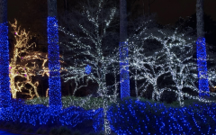 Over the past 28 years, Mr. and Mrs. Taylor have perfected their elaborate Christmas light display. Their fine-tuned annual production takes over 2,000 hours of labor accumulated over the course of four months. The Taylor's hard work produces exponential amounts of Joy throughout Kennesaw's community as Lights of Joy sits at the top of many Georgians' holiday bucket lists.