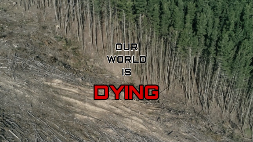 Throughout+2021%2C+extreme+weather+around+the+world+intensified%2C+and+since+the+1980s%2C+climate-related+extremes+have+increased+by+83%25.+Despite+the+severity+of+global+warming%2C+humans+can+mediate+the+effects+by+acting+quickly.+A+huge+step+requires+reducing+the+use+of+fossil+fuels+and+the+burning+of+greenhouse+gasses.+In+support+of+this+issue%2C+President+Joe+Biden+recently+re-entered+the+Paris+Agreement+and+proposed+his+environmental+plan+at+the+Leaders+Summit+on+Climate.+NC+students+can+also+support+our+planet+by+remaining+educated+on+global+warming.+%0A